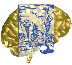 AIC_Brain
